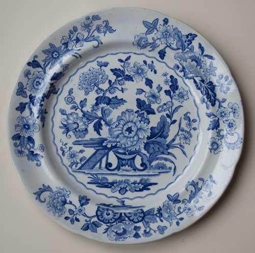 Dresden Opaque China dinner plate front