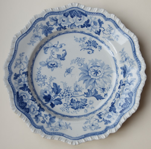 Pattern 51 dinner plate front